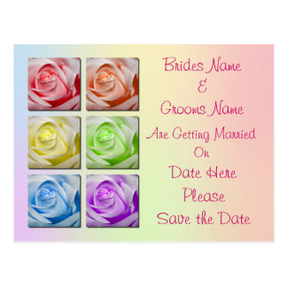 Macro Rainbow Roses Wedding Save The Date Postcard