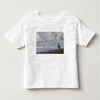Magellanic Penguin, spheniscus magellanicus, T Shirt