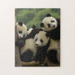 Melanoleuca d'Ailuropoda de bébés de panda géant) Puzzle