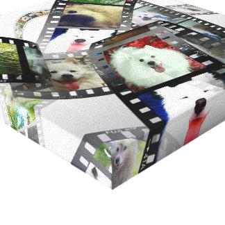 Mini American Eskimo Gallery Wrap Canvas