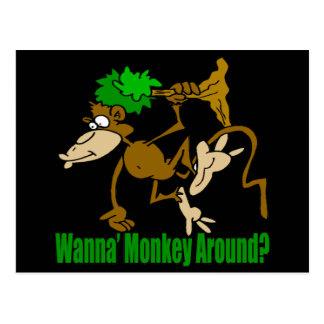 Monkey autour les cadeaux drôles de T-shirts Carte Postale