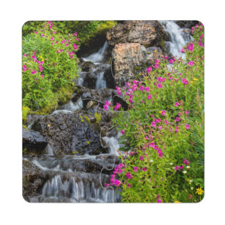 Monkeyflowers Along Lunch Creek In Glacier Puzzle Coaster
