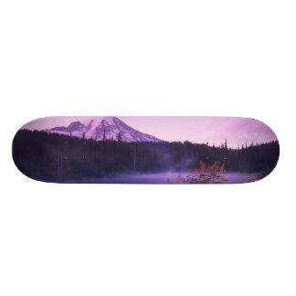 N.A., USA, Washington, Mt. Rainier National Custom Skateboard