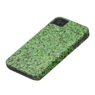 Natural Touching iPhone 4 Case-Mate Cases