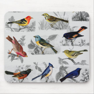 Old Fashioned Birds Mouse Pad