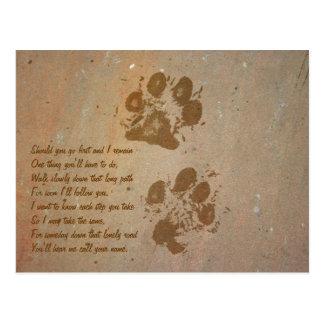 Paw Prints on Stone Postcard