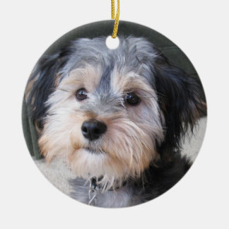 Personalized Dog Photo Frame - DOUBLE-SIDED Round Ceramic Ornament