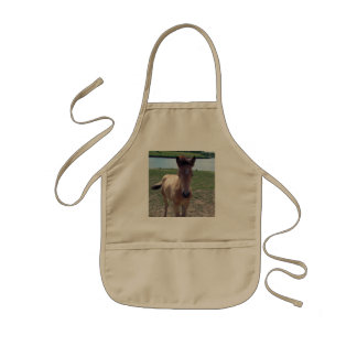 Picture of Horses - A Young Horse Foal Standing Kids Apron