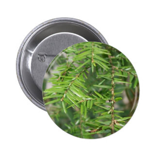Pine Needles and Branches 2 Inch Round Button