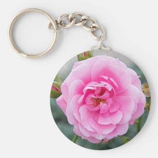 Pink rose blossom basic round button keychain