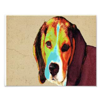 Pop Art Like Beagle Photo