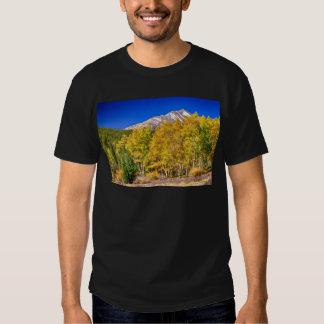 Rocky Mountain Autumn Bonanza Shirt