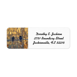 Romantic sparrow bird couple, Photo Return Address Return Address Label