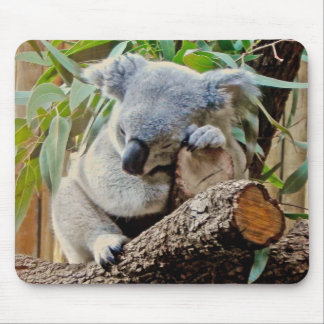 Sleeping Koala Bear Mouse Pad