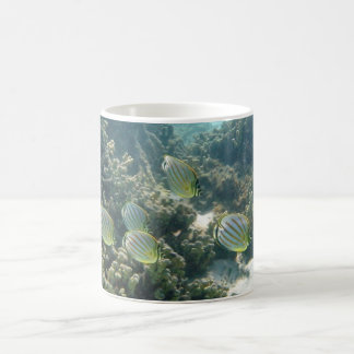 Small School of Butterfly Fish Classic White Coffee Mug