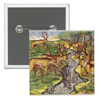 Stag Hunt, from 'Brevis Narratio' 2 Inch Square Button