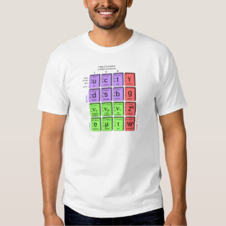 Standart model of elementary particles tee shirt