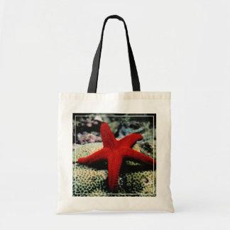 Star Fish | Red Sea Budget Tote Bag