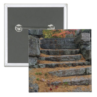 Steps covered in pine needles, White Mountain 2 Inch Square Button
