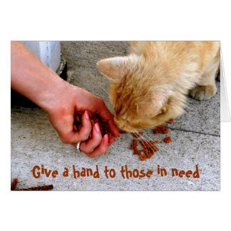 Stray Cat Hawaii Shelter Pets Greeting Card