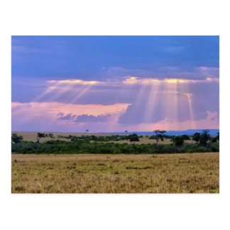 Sun setting on the Masai Mara. Postcard