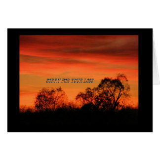 Sunset Trees Card - Sorry For Your Loss