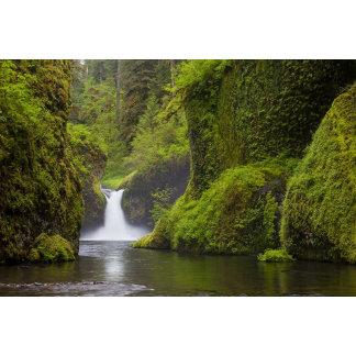 USA, Eagle Creek, Columbia Gorge, Oregon. 3
