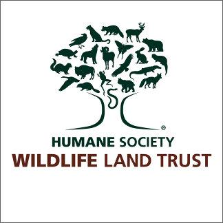Wildlife Land Trust