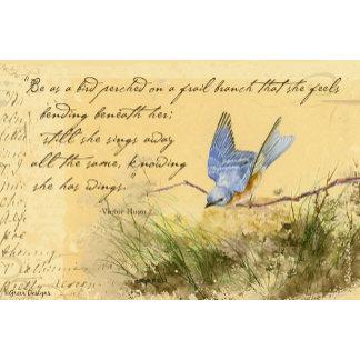 Bluebird & Victor Hugo