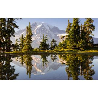 Mt. Rainier reflected in a tarn near Plummer Peak