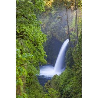USA, Eagle Creek, Columbia Gorge, Oregon.