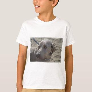 Sweet Weimaraner Shirts