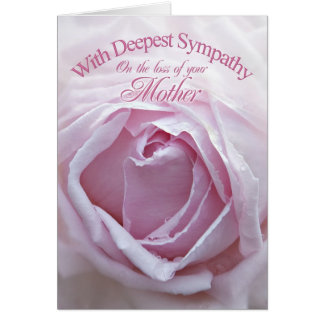 Sympathy for loss of Mother, a beautiful pink rose Greeting Card