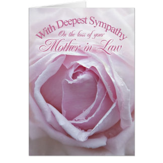 Sympathy for loss of Mother-in-Law, a  pink rose Greeting Card