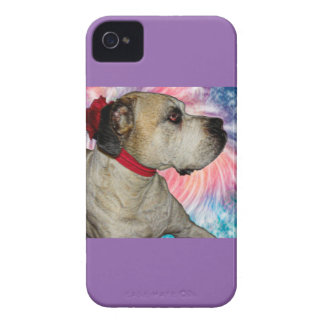 Touching the Sky Case-Mate iPhone 4 Case