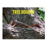 Tree Hugger! Postcard