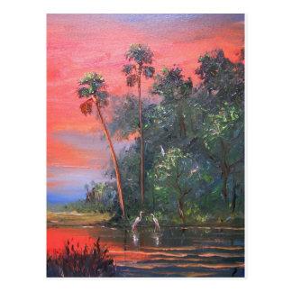 Tropical Sunny & Hot Postcard
