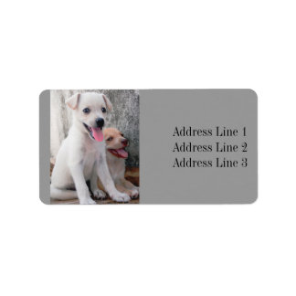 Two Cute Puppies Photo Address Label