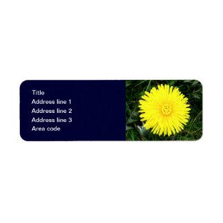 Two Dandelions Custom Postal Label Return Address Label