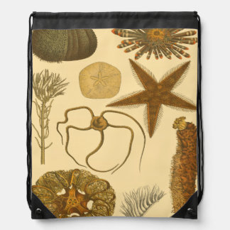 Underwater Sea Creatures Drawstring Bag