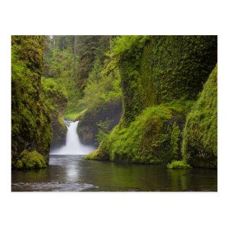 USA, Eagle Creek, Columbia Gorge, Oregon. 3 Postcard
