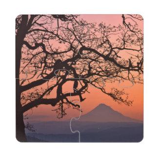 USA, Oregon, Columbia River Gorge National 2 Puzzle Coaster