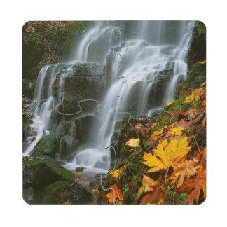 USA, Oregon, Fairy Falls, Columbia River Gorge Puzzle Coaster