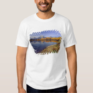 USA, Wyoming, Grand Teton National Park. Mt. 2 Tees