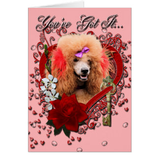 Valentines - Key to My Heart - Poodle - Red Greeting Card