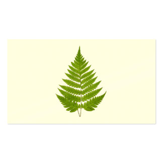 Vintage 1800s Olive Green Fern Leaf Template Business Card