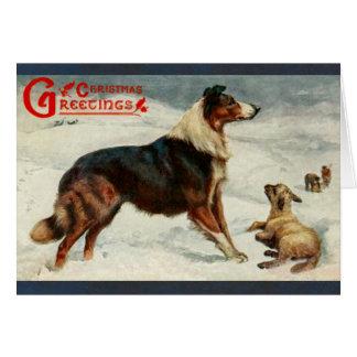 Vintage dog and sheep christmas holiday card