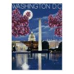 Washington, DC Postcard