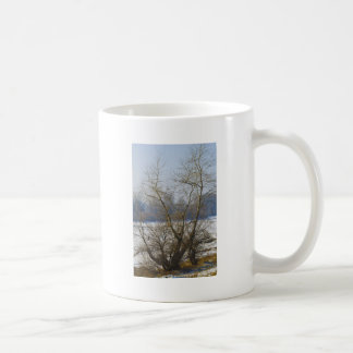 winter - danube river in frosty day classic white coffee mug