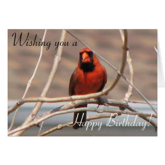 Wishing you a, Happy Birthday! Greeting Card